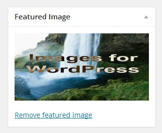 What is a featured image