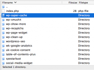 FileZilla File Listing