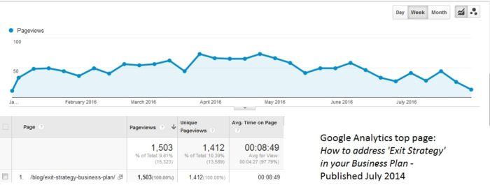 Graphic Information from Google Analytics